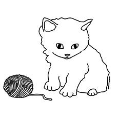 O-um-gatinho-brincando-com-o-celeiro