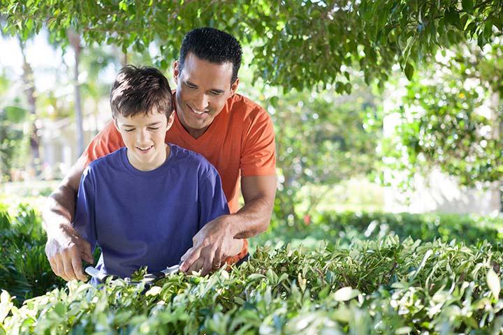 Participe de atividades de jardinagem comunitárias.