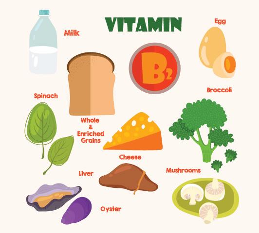 Complexo de vitamina B durante a gravidez - Vitamina B2