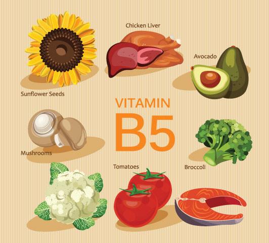 Complexo de vitamina B durante a gravidez - Vitamina B5
