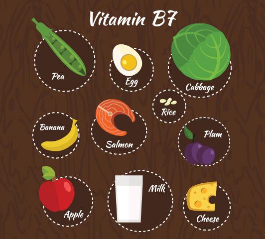Complexo de vitamina B durante a gravidez - Vitamina B7