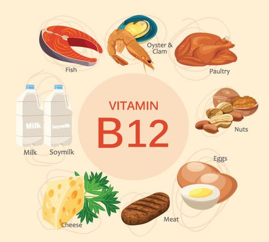 Complexo de vitamina B durante a gravidez - Vitamina B12