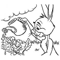 Desenhos de Coelho Pooh para Colorir