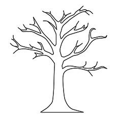 Árvore nua coloração