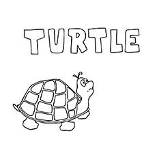Folha de coloração grátis para impressão Turtle Capital T
