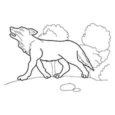 Desenhos de lobo cinzento para colorir
