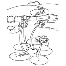 Desenhos para colorir Lago - Nenúfares em um lago