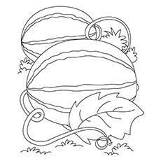 Desenho de melancia para colorir - melancia