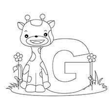 O-g-para-girafa