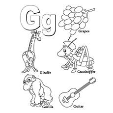O grupo de coisas g
