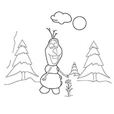 Olaf arrancando flor 17