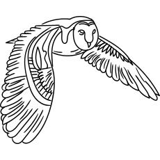 Desenho de Coruja-das-torres para colorir