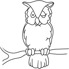 Desenhos para colorir Coruja Longa