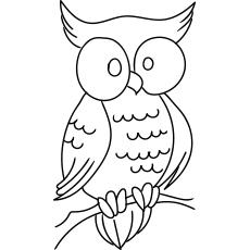 Página para colorir coruja grande para crianças