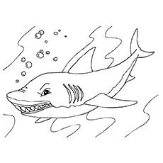 Tubarão-baleia para colorir