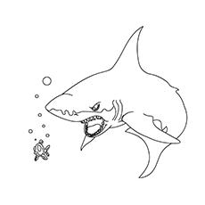 Tubarão aterrorizante