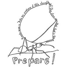 A preparação da formiga
