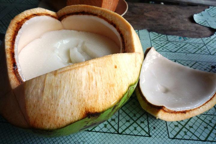 Carne de coco