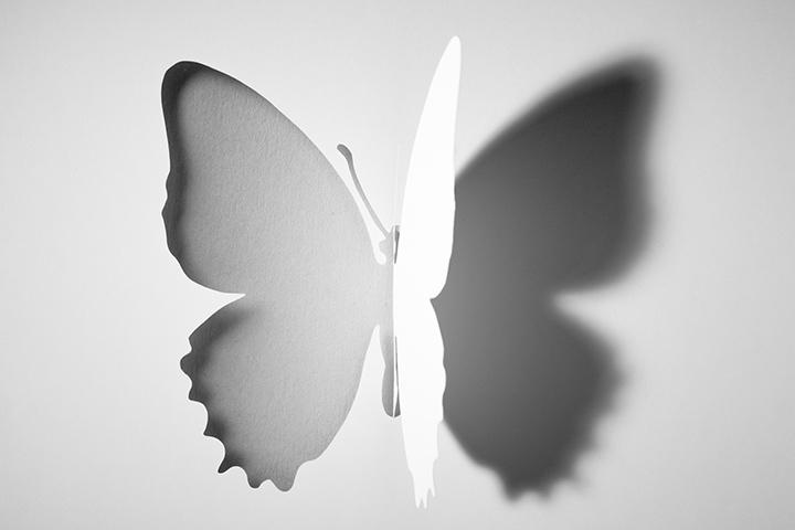 Entalhe dobrado da borboleta