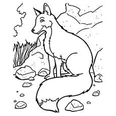 A raposa da montanha