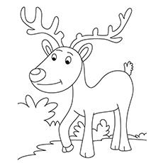 Desenho de Rena simples para colorir