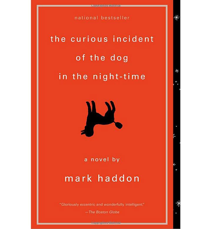 O curioso incidente do cão à noite