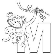 M macaco coloração