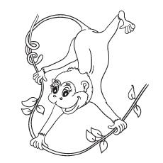 Desenho de macaco para colorir para crianças