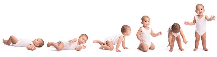 Os caminhantes podem causar atraso no desenvolvimento motor em bebês.