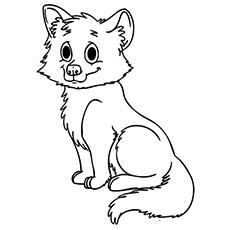 A raposa bebê