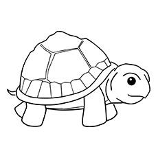 Desenho de tartaruga pequena para colorir