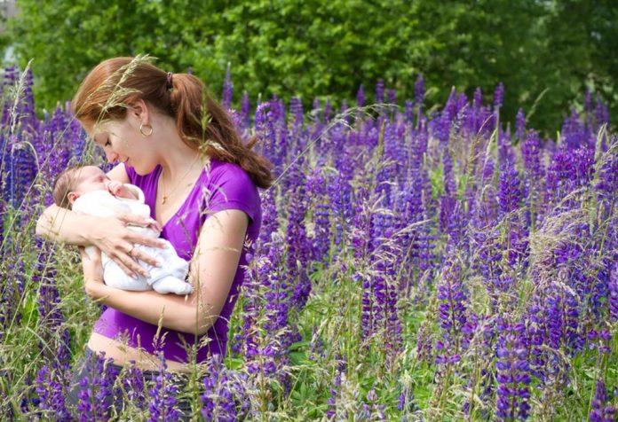 Uma mãe segurando seu bebê em pé em um campo de tremoço roxo