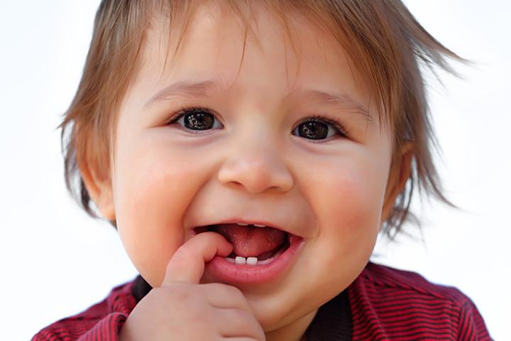 É assim que os dentes de leite crescem