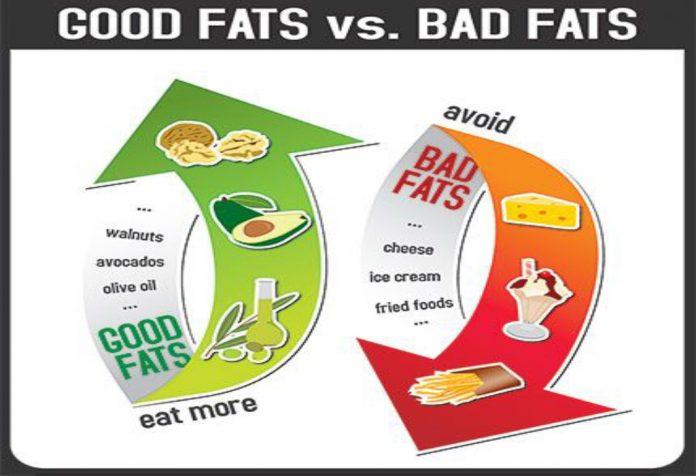 O básico de gorduras boas e más