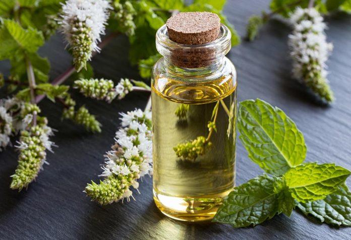 O óleo de hortelã-pimenta é seguro para bebês?