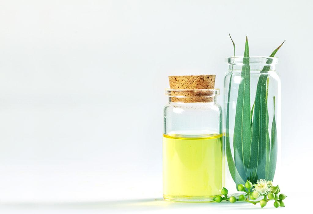 Benefícios do uso de óleo de eucalipto