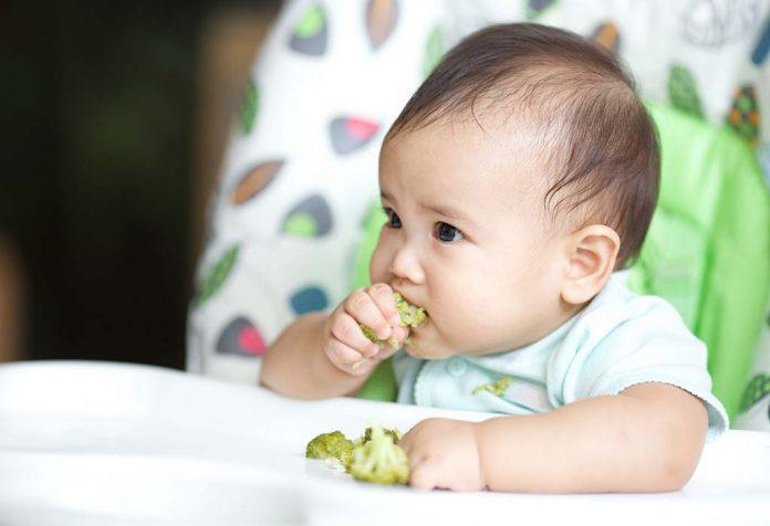 Tabela de alimentos para bebês de 7 meses e 2 semanas