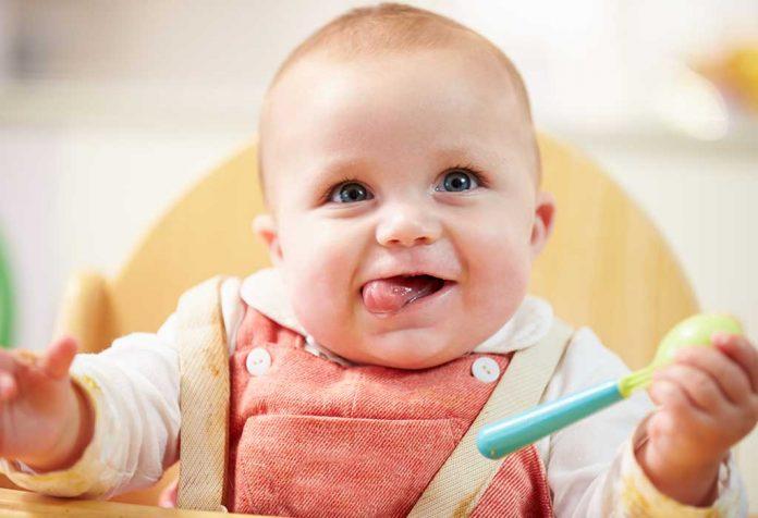 Programa de alimentação, receitas e dicas para bebês de 6 meses