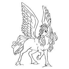 Pegasus bonito
