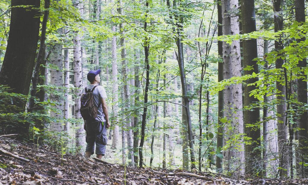Lidar com a meditação da incerteza