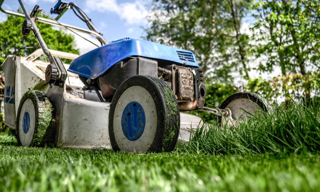 O que são os pais que cortam grama e como podem reduzir?